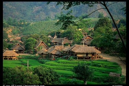 Thai village of stilt houses, near Mai Chau. Northwest Vietnam